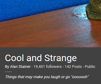 Cool and Strange collection follower count